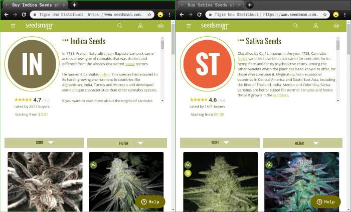 indica seeds vs sativa seeds