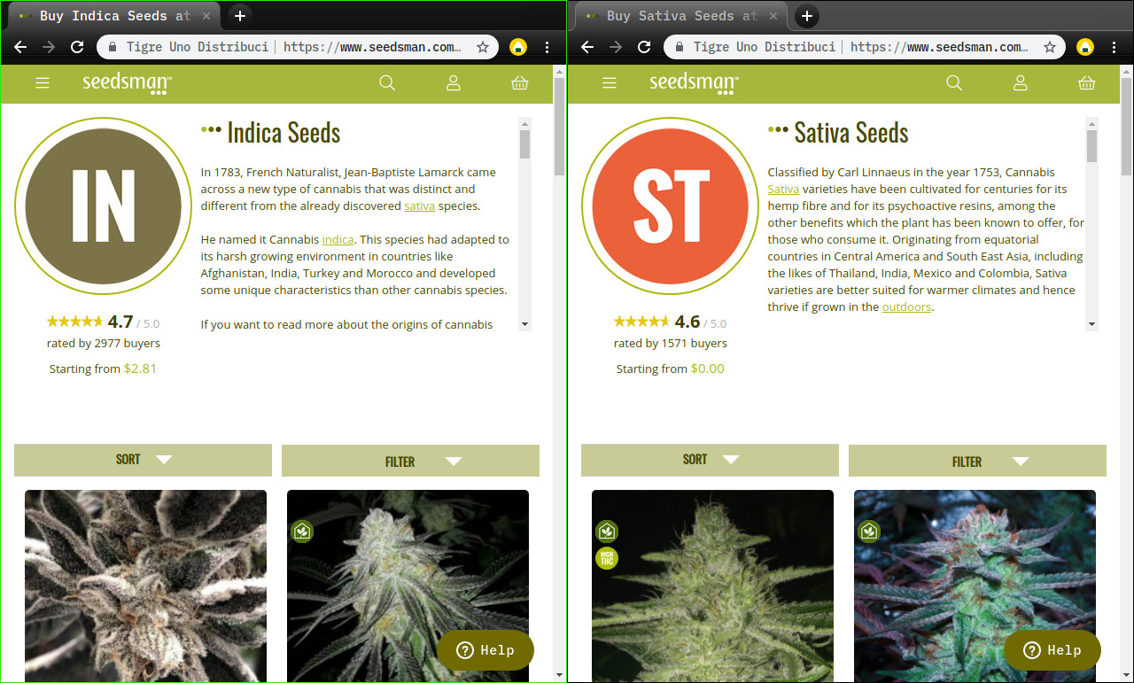 indica seeds vs sativa seeds