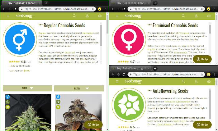 regular seeds vs feminized seeds vs autoflowering seeds