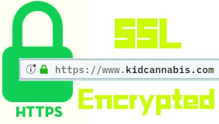 ssl encrypted https