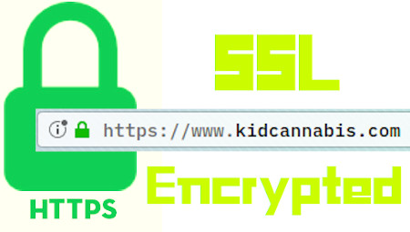 ssl encrypted https